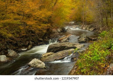 The Little River in beautiful fall colors in Smoky Mountains National Park Tennessee