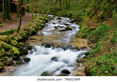 Little river in the black forest in germany