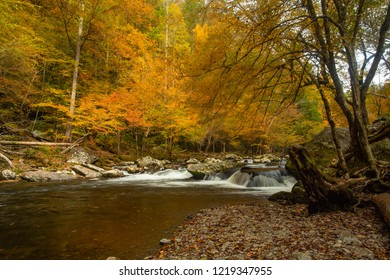 The Little River in Fall colors in Smoky Mountains Tennessee
