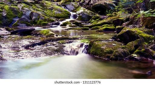 Little river in summer