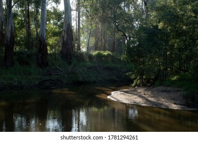 Little sandy beach on a bend of the Tarago River at Picnic Point in Longwarry, near Warragul in Gippsland, country Victoria, Australia.