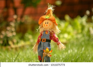 little scarecrow in the green grass