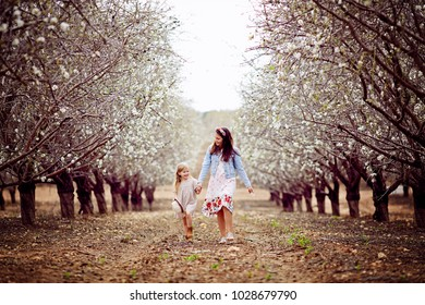 Little sisters are standing in a park with almonds. The concept of travel, lifestyle and childhood