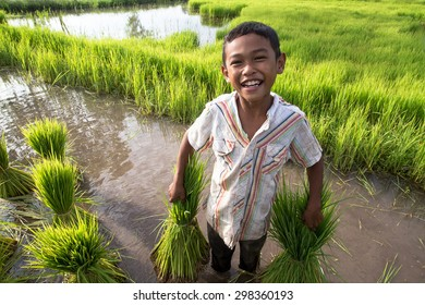Little smiling boy farmer  on green fields