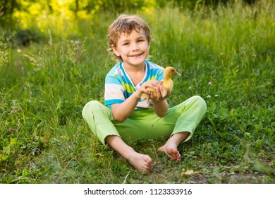 The little smiling child boy with ducklings sitting on  in the summer day