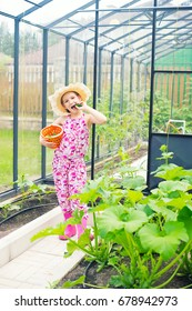 Little smiling country girl in summer hat eating cucumber picked up from bed in greenhouse