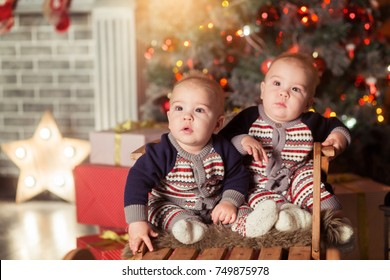 21356dc56 Little smiling twins baby boys in a blue and red knitted sweater with Christmas  tree playing