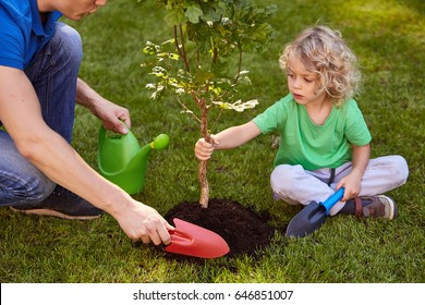 Little son and his father watering a small tree
