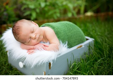 Little sweet newborn baby boy, sleeping in crate with wrap and hat, outdoors in garden