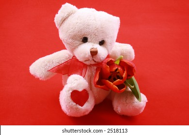 little sweet teddy bear with red tulip - little gift