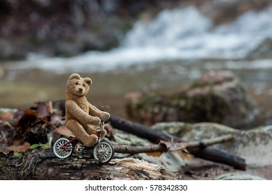 Little teddy bear hiking with bicycle - mountain bike tour