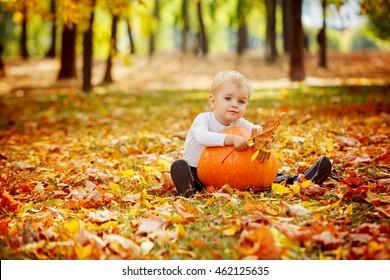 Little toddler boy with big orange pumpkin in autumn garden