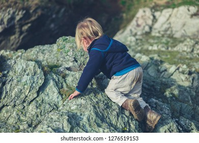 A little toddler is climbing a rock in nature