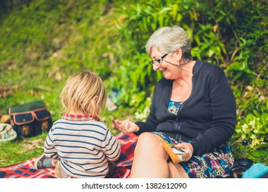 A little toddler and his grandmother are having a picnic in the forest