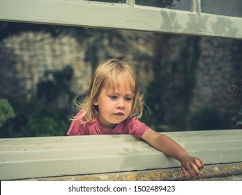 A little toddler is looking out the window from a conservatory in the summer