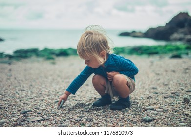 A little toddler is playing with stones on the beach