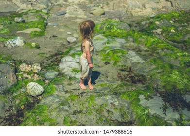 A little toddler is standing on the beach in the summer