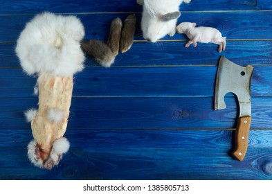 Little white rabbit, a dead newborn rabbit, the pieces of rabbit and the axe on the blue Board