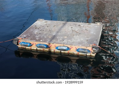 A little wooden raft floating at the port of Kiel with a dirty surface linked to the shore with red ropes