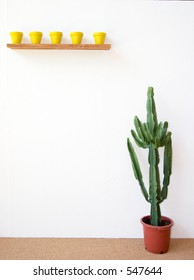 little yellow pots and a huge cactus by a white wall