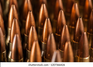 Live 223 ammunition in case from the side