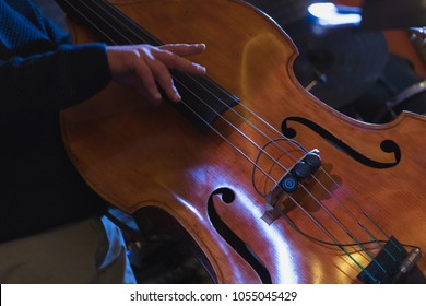 live concert: jazz double bass player, detail on the hands that