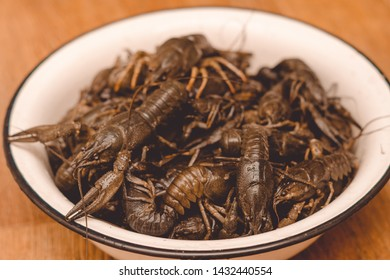 Live crayfish in a bowl.Isolated group of large live gray crayfishes in a metal bowl on white background.Against the brown linoleum. Fresh uncooked raw crayfish ready for cooking.