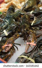 Live european lobster at fish market