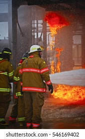 Live Fire Training Project