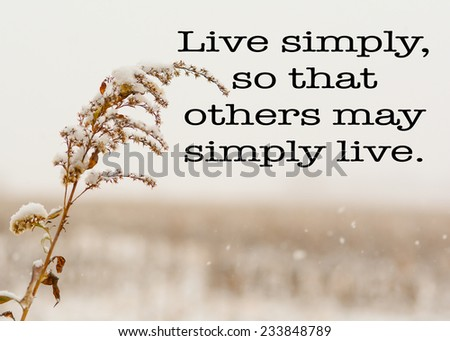 Live Simply Quote Simple Weed Corn Stock Photo Edit Now 60 Mesmerizing Nsc Stock Quote
