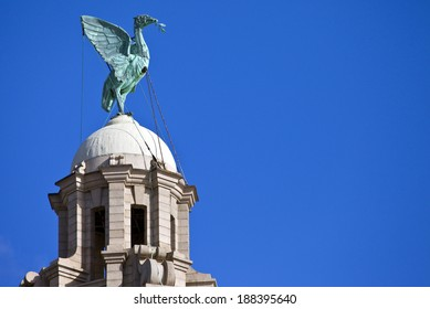 A Liver Bird statue perched ontop of the Royal Liver Building in Liverpool.