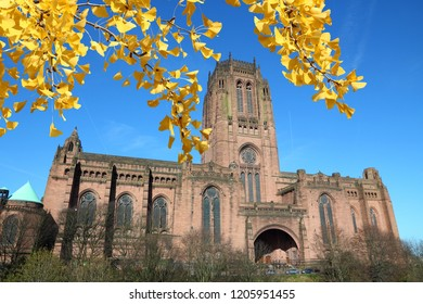 Liverpool UK. Anglican Cathedral. Autumn leaves colors.
