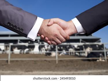 Livestock Handshake