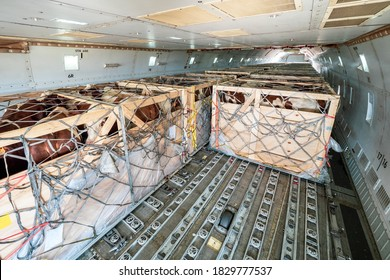 Livestock in wooden boxes secured by nettings being shipped on the main deck cargo hold of a Jumbo Jet freighter aircraft - Shutterstock ID 1829777537