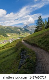 Livigno / Italy, August 20, 2016: a beautiful summer scene from Livigno, hiking trough the pine forest and the green meadow, travel photography, alpine landscape, vertical wallpaper