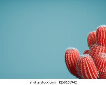 Living Coral color of the Year 2019. Background with cactus in trendy color
