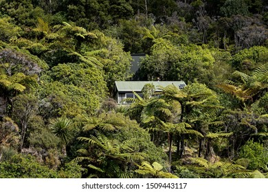Living off the grid. Solar panels providing electricity to an off grid house in New Zealand's back country bush.