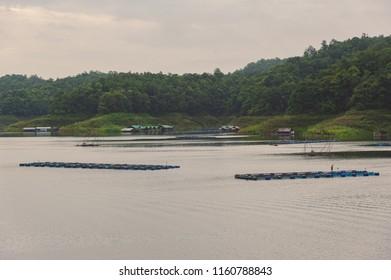 Living raft and fishing farm.