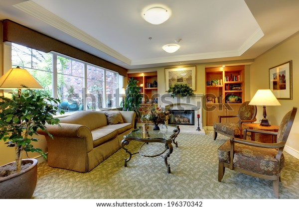 Living Room Antique Furniture Fireplace Bookshelves Stock ...