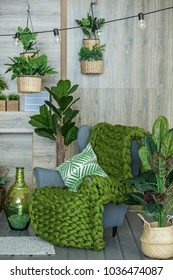 Living room with armchair and many plants. Concept of living room, interior, home.