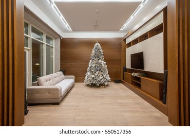 Living room with a Christmas tree in a modern style.