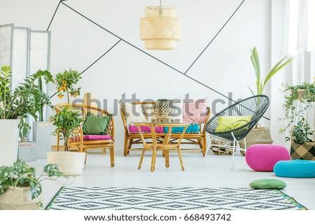 Living Room Colorful Poufs Plants Decorative Stock Photo Edit Now