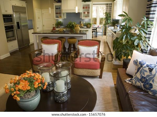 Living Room Contemporary Furniture Decor Stock Photo (Edit ...