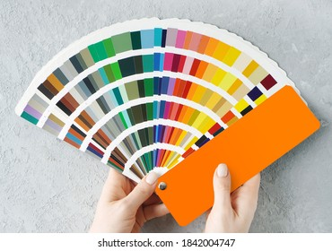 Living room design. Appartment renovation concept. Female hands holding colors palette fan on a concrete wall background.
