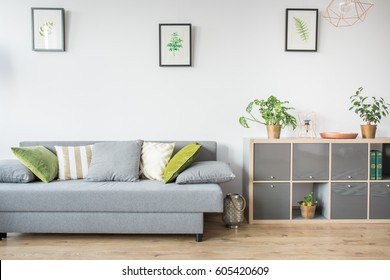 Living room with grey sofa, decorative pillows and bookshelf