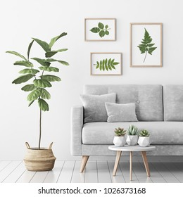 Living room interior with gray velvet sofa, fiddle leaf tree in wicker basket, succulents on coffee table and three frames with leaves on white wall background. 3D rendering.