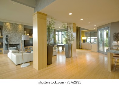 Living Room Interior in Luxury Home