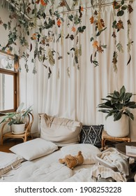 Living room plants decoration with white bedding and curtain in warm tone background.