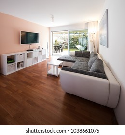 Living room with window and garden view. Gray designer sofa. Nobody inside