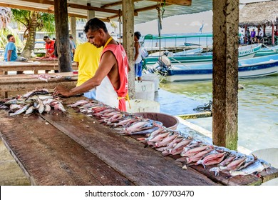 Livingston, Guatemala - August 31, 2016: Fishermen prepare fish on bench at waterside fish market in Caribbean town of Livingston